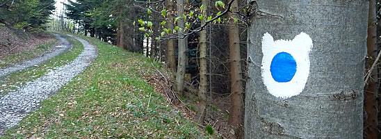 Po medvědích stezkách - MODRÁ STEZKA