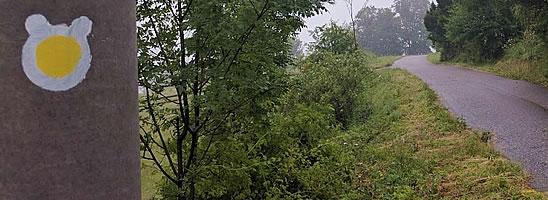 Po medvědích tlapkách - ŽLUTÁ STEZKA