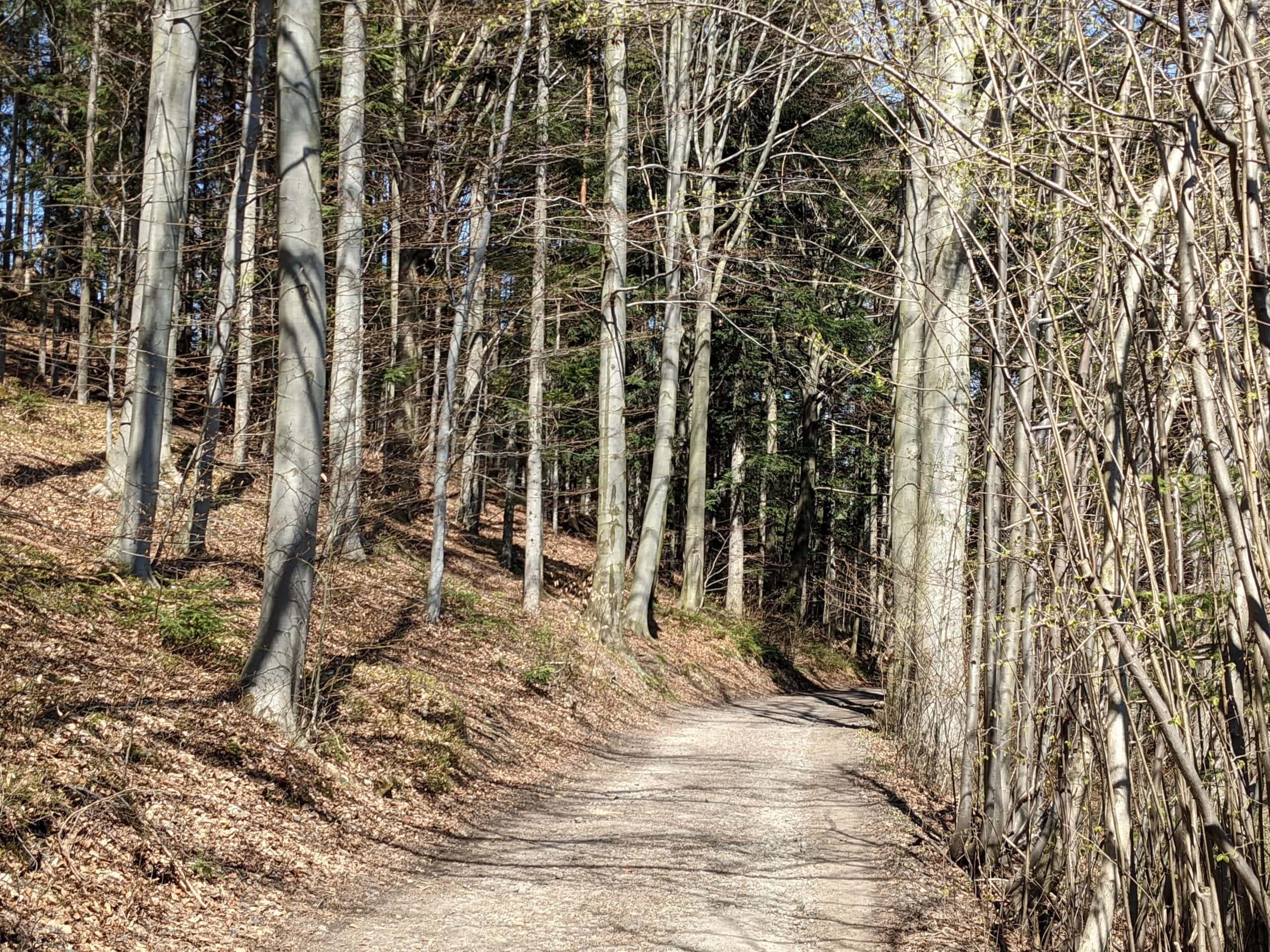 Trasy v Kunčicích pod Ondřejníkem